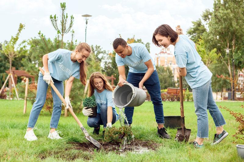 Rotaractors Volunteering and Planting a Community Garden